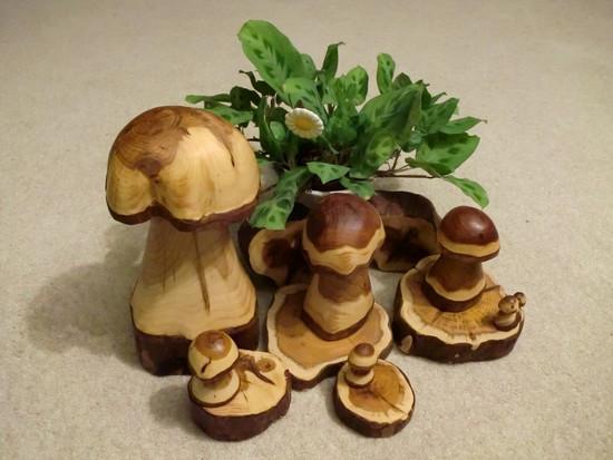 pilze sammeln mal anders hier gibt es pilze aus holz zu sehen holz. Black Bedroom Furniture Sets. Home Design Ideas